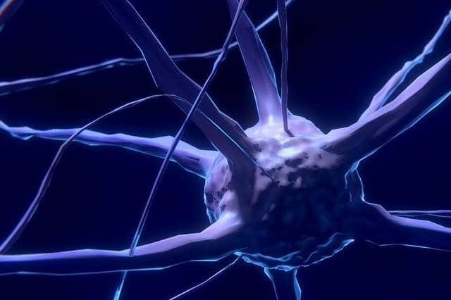 enfermedades neuromusculares síntomas